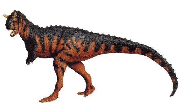 conozcamos el carnotaurus � guia de dinosaurios