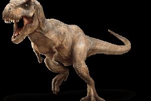 El primo pequeño del Tiranosaurio Rex
